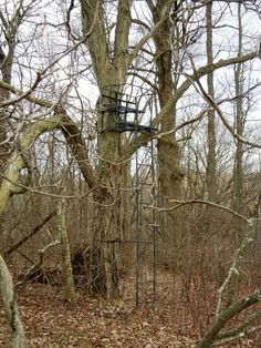 25 acre Crawford county ridgtop farm - Southwest WIProperties