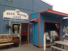 Blue Moose Cafe, Port Townsend is a local favorite! Port Townsend Washington, Oregon Washington, Oh The Places You'll Go, Places To Eat, Moose Cafe, Yasmine Galenorn, Blue Moose, Summer Goals, Close To Home