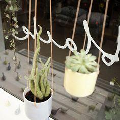 Optional title display Kartell, Luminaire Design, Home Decor Inspiration, Decoration, Plant Hanger, Flower Pots, Vase, Wreaths, Display