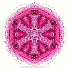 🌸RŮŽOVÁ🌸 ••• Dnes laděno do růžova 😊 ••• #mandala #graphicart #art #umeni #design #energy #mindfulness #pink #ruzova #czech #relax #meditation #dowhatyoulove #delejcomilujes #dots #tecky #pointilism #spiritual #geometry