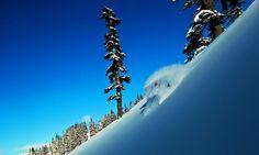 Freeride & Skitouren Ausrüstung - Sport Milanovic am Arlberg : Sport Milanovic Arlberg