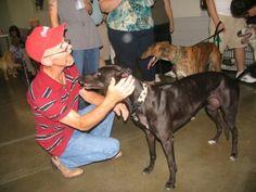 AKC Responsible Dog Ownership Day - Alamance Kennel Club, Inc