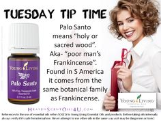 Palo Santo - poor mans Frankincense Yl Oils, Yl Essential Oils, Young Living Essential Oils, Palo Santo Essential Oil, Image Collection, Health Remedies, Essentials, Things To Come, Pure Products