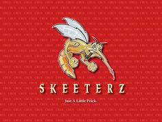 Skeeterz Logo Panel.jpg