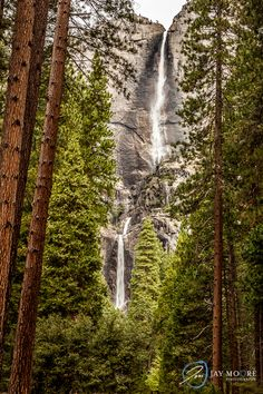 Yosemite Falls | © Jay Moore Photography