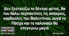 Δεν ξεστολίζω το δέντρο φέτος, θα του βάλω σερπαντίνες τις απόκριες, καρδούλες του Βαλεντίνου, αυγά το Πάσχα και το καλοκαίρι θα στεγνώνω μαγιό Best Quotes, Funny Quotes, Funny Greek, Greek Words, Greek Quotes, Funny Moments, Laugh Out Loud, Picture Quotes, True Stories