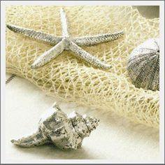 Use Krylon-Chrome to get your own 'pottery barn' silver shells..thanks FG2B blog.