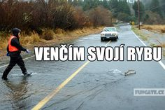 Venčím svojí rybu Stupid Memes, Funny Memes, Jokes, Aesthetic Photo, Just Do It, I Laughed, Deadpool, Haha, Funny Pictures