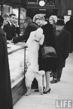 Vintage Life pic of shopping with your poodle I think the words are Can I please have one mommy???
