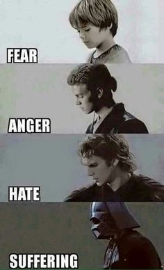 Fear leads to Anger. Anger leads to hate. Hate leads to... Suffering.