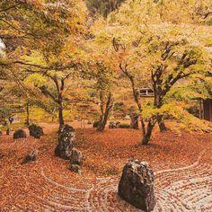 The rock garden of the Zen temple Komyozen-ji #instagramjapan #IG_JAPAN by williamhoki