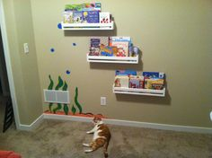 Homemade bookshelves!