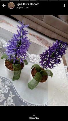 Plants, Love, Plant, Planets