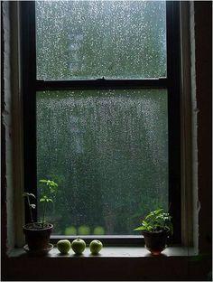 Le bruit de la pluie qui ruisselle dehors...