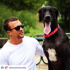 If he isn't one of the sexiest hockey players. Luke Glendening and his dog, Lucy, for the Detroit Red Wings 2016 calendar benefiting the Hockey Mom, Hockey Teams, Hockey Players, Detroit Red Wings, Luke Glendening, Red Wings Hockey, Detroit Sports, Hockey Season, Perfect People