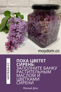 House On Wheels, Health And Beauty, Mason Jars, Diy And Crafts, Projects To Try, Remedies, Health Fitness, Herbs, Homemade