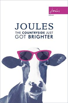 2348186137 The fab new Joules frames have arrived! Come into our Cardigan branch to  see the full range of frames now! MIDO · Mondottica