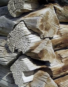 Dovetail log cabin ends - beautiful wood detail Cabins In The Woods, House In The Woods, Knock On Wood, Urban Rustic, Wooden Screen, Plant Pictures, Wood Texture, Old Wood, Wabi Sabi