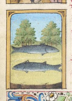 Pisces | Book of Hours | France, Paris | ca. 1470 | The Morgan Library & Museum