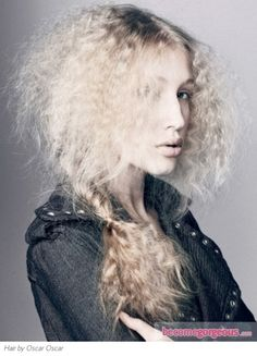 Long Frizzy Braided Hair Style