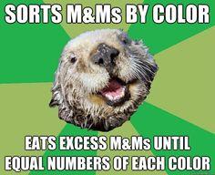 OCD Otter Meme