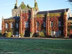 Springfield Castle - now I can really see myself snuggled up in front of a roaring fire here!  I have a real soft spot for ivy covered houses and castles.  This one is currently a luxury Bed & Breakfast and is situated in Dromcollogher, County Limerick, Ireland.