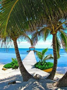 Belize--- 2 more days! - Pins-Summer Sun wind, wine and fruits Belize--- 2 more days! - Pins-Summer Sun wind, wine and fruits Amazing Places On Earth, Places Around The World, Dream Vacations, Vacation Spots, Romantic Vacations, Vacation Travel, Vacation Places, Summer Travel, Vacation Ideas