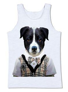 camiseta cachorro border collie pull over gravata xadrêz bulberry colete animal pet animal de estimação