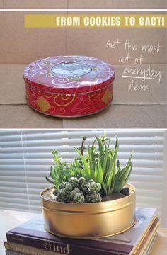 Modern planter made from a cookie tin.  See DIY @ http://designplusyou.blogspot.com