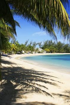 Jamaica Vacation Travel Reviews: Jamaica is one of the luxury islands and the finest tourist destinations in West Indies