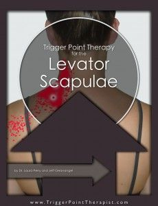 Learn how to locate and release the Trapezius trigger points that produce upper back pain, shoulder pain, neck pain, and headaches with this trigger point video Massage Tips, Massage Therapy, Trapezius Stretch, Trigger Point Therapy, Spine Health, Upper Back Pain, Kinesiology Taping, Scapula, Massage