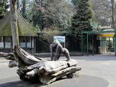 Apenheul Primate Park – Apeldoorn, Netherlands - Atlas Obscura