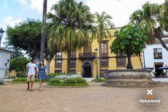 http://www.webtenerife.com/tenerife/la-isla/municipios/icod-vinos/