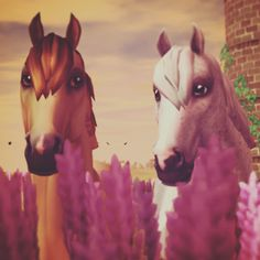 Honey and Whiteout. They are soooooo cute (Ps not my picture but I own the same horses named that) Horse Pictures, Cute Pictures, Star Stable Horses, Horse Games, Horse Stables, Beauty Photos, Wild Horses, Cow, Amelia