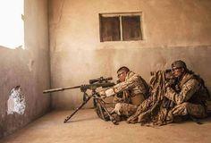 MARSOC Marine snipers