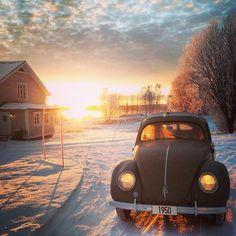 Classic 1950 VW Beetle