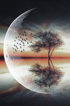 univer art, in moonlight at nature beauty Scenery Wallpaper, Galaxy Wallpaper, Beautiful Nature Wallpaper, Beautiful Landscapes, Beautiful Moon Images, Beautiful Pictures, Moon Photography, Landscape Photography, Galaxy Art