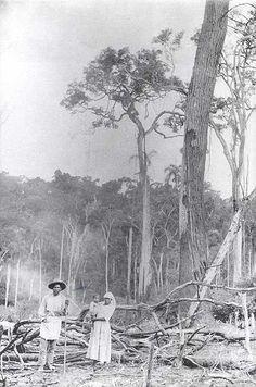 Histórico do contato > Kaingang