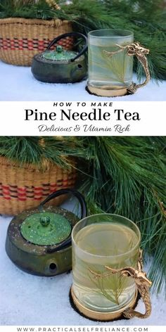 Vine And Branches, Natural Vitamin C, Survival Books, Wild Edibles, Cold Remedies, Pine Needles, Edible Plants, Healing Herbs, Herbal Medicine