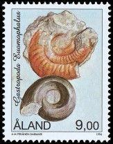 Fossils, 1996, Gastropode Eumaphalus