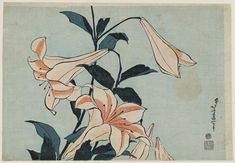 """""""Lilies"""" by Katsushika Hokusai (from an untitled series known as Large Flowers)"""