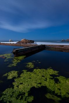 Sutro Baths- I was fascinated with this place when I was in San Fran!!!!