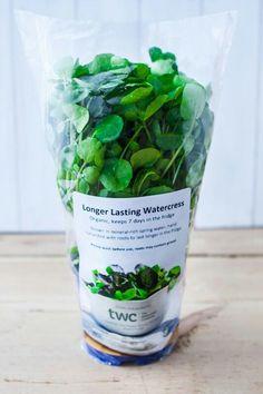 Watercress in longer lasting packaging