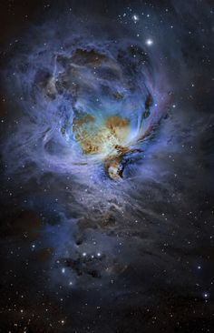 M42 Orion Nebula in Narrowband Credit: (moonrocks) | AstroBin