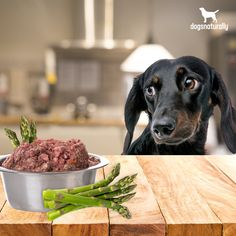 Asparagus might not be the first thing you think of when you're preparing your dog's dinner.  But ...   ✅ It's packed with fiber that's necessary to support immunity and healthy gut flora.   ✅ It's a natural source of vitamins and minerals - essential nutrients to promote a healthy dog.  ✅ It provides antioxidants that help control inflammation and reduce risk of chronic disease.   Learn to properly prep and serve asparagus to your dog here.