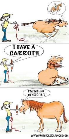 #ArabianHorses #Humor #Treats
