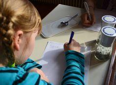 Kräuterpesto selbst gemacht Workshop, Things To Do, Creative, Kids, Atelier