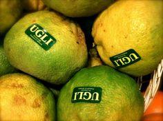 Ugli Fruit - For Energy