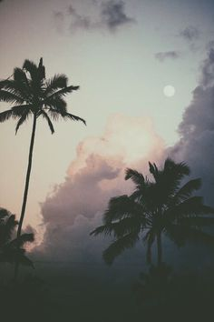 My favorite things: Clouds, Moon, Palm Trees