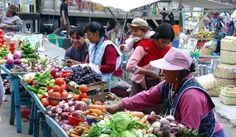 Condors and Culture in Otavalo Head out of Quito, Ecuador, for a tour of Otavalo and its wildlife and market. Begin your adventure by travelling through the beautiful highland province of Imbabura. Stop at San Pablo Lake to take... #Event #Culture #Nature  #Tour #Backpackers #Tickets #Entertainment